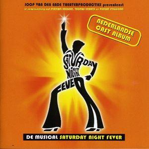 Saturday Night Fever (Niederlande 2001)
